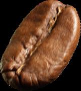 bean-5