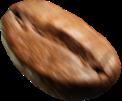bean-6